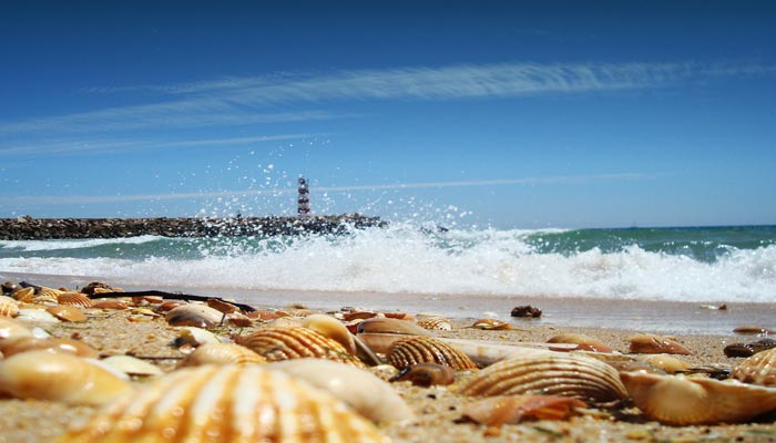 Image: Algarve Beaches